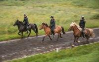 Jeżdżący na koniach